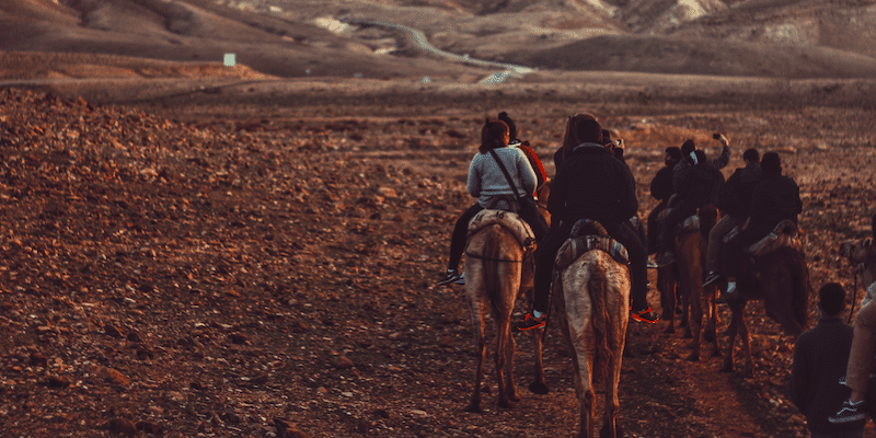 Airbnb Experiences: a group going horseback riding